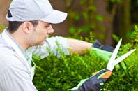Hampton Hill gardening services